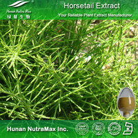 Horsetail Herb Extract, Equisetum Arvense Herb Extract, Organic Silica 7%