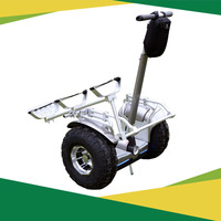 China new hand free golf e scooter off road electric mobility standing motorcycle vehicle for sale