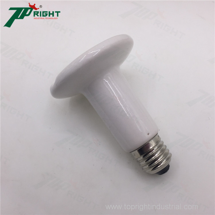 IR ceramic animal heater bulb to Keep animal warm