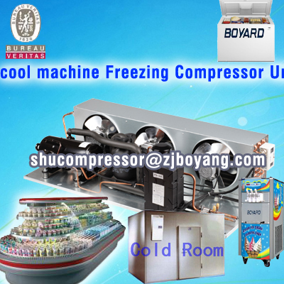 Boyard commercial deep freezer for cold storage chiller compressor supplier from china for mini showcase chest freezer showcase