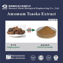 high quality natural Amomum tsaoko extract