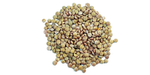 Eston and Richlea Green Lentils