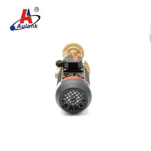 Custom ac 220v mini small high temperature water or oil transfer pumps