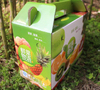 Strong Vegetable And Fruit Packaging Box Fruit Packaging Carton Gable Box In Printing