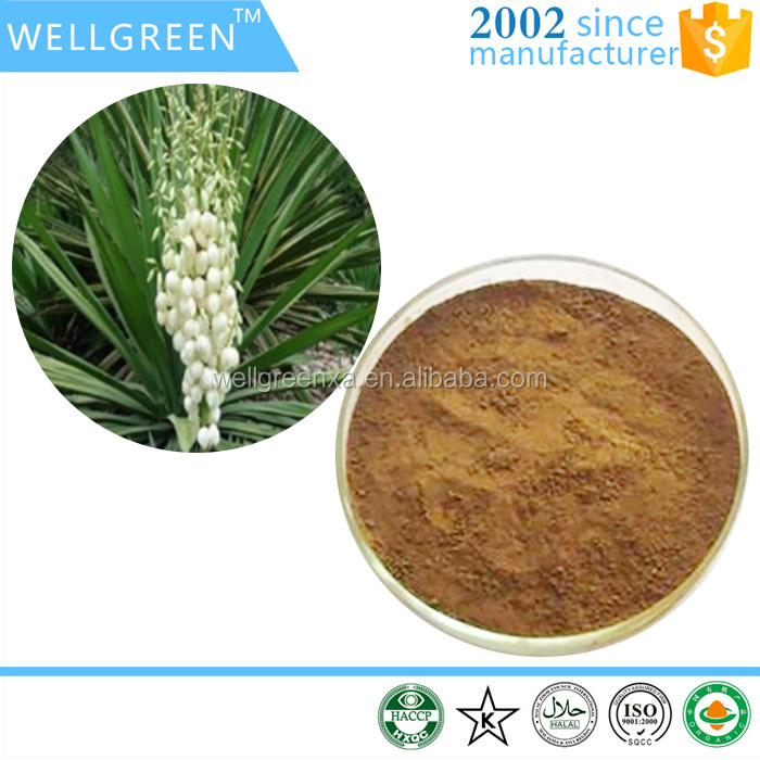 Organic natural herbal extract Yucca Extract/Sarsaponin powder