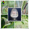 insect growth regulator,pest control chemicals 20%SC 25%WP 75%WP 5%EC 95%TC diflubenzuron 480g/l