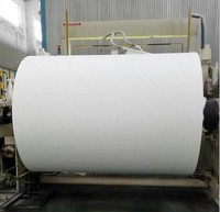 Natural White color parent jumbo rolls big rolls toilet tissue paper for hotel station ktv