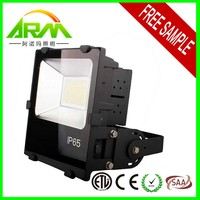 200w led flood light with meanwell driver