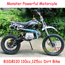 Gas Powered 70cc 110cc Dirt Bike Pit Bike 250cc Motor with Disc Brake