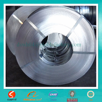 Narrow Galvanized Steel Coil And Strip