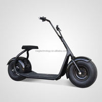 Powerful 2000W Eropean standard EEC/ COC approved moped electric motorcycle