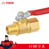 lpg gas valve lighter gas refill valve NPT/G gas valve brass gas valve m/f