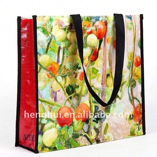 2011 canvas bag