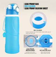 BPA Free Collapsible Silicone Water Canteen Leak Proof Portable Collapsible Drinking Bottle