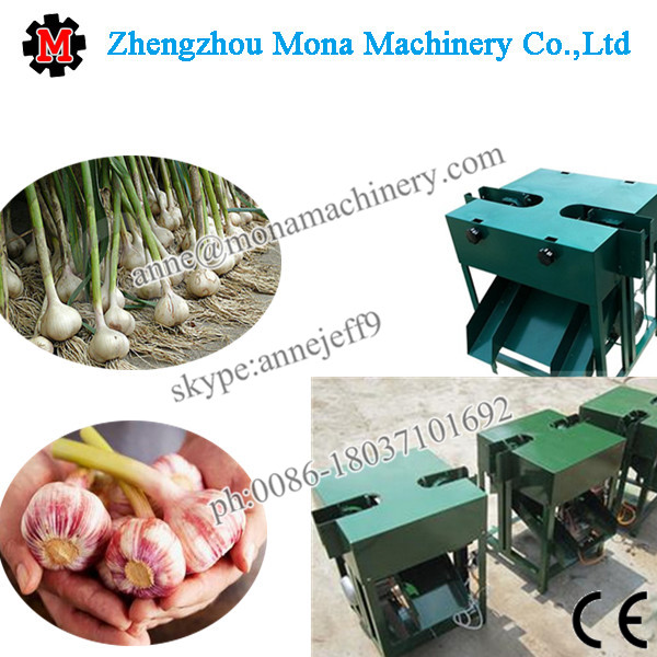 Fresh Garlic Root Flat Cutting Machine/Garlic Root Cutting Machine/Garlic Cutting Machine