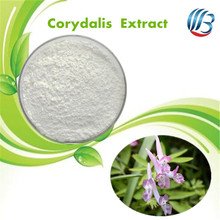 LanBing supply high quality corydalis extract corydalis powder