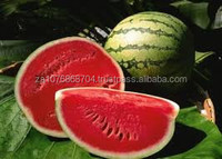 Fresh water melons from South Africa