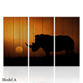 HD Sunset Scenery Rhinoceros Animals Painting Canvas Wood Board Backgound Digital Prints for Bedroom 40x80cmx3pcs/set