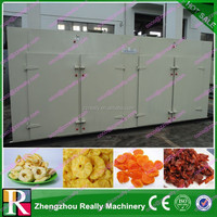 New type product fruit drying processing lines
