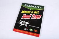 odorless non-poison disposable mouse glue trap paper board