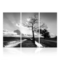 3 Panels Canvas Art Decor Black and White Nature Landscape Wall Picture Stretched Canvas Art Prints