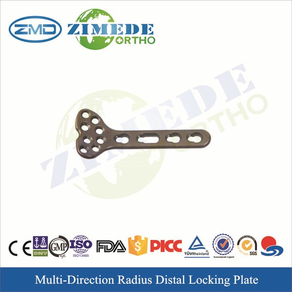 2.4mm ulna and radius locking plate system bone plates and screws mini locking system China