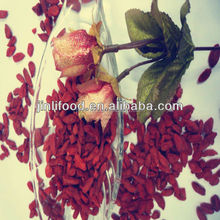 Top quality Qinghai dried goji berry for sale
