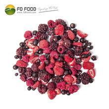 Freeze Dried Fruits Bulk Blackcurrant Raspberry Strawberry And Blueberry Wholesale Dried Berries