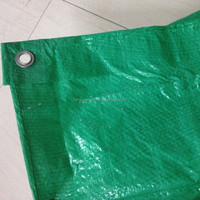 waterproof canvas ground sheets, tarpaulin for ship cover, merry christmas pe tarpaulin
