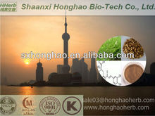 ISO/HALAL Certified Astragaloside 5%-20% Astragalus Extract/Astragalus membranaceus(Fisch.)Bge.