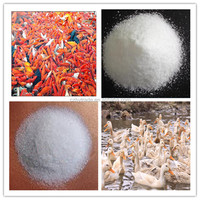 Betaine hydrochloride (hcl) 98% mineral element for animal feeding