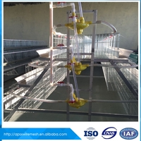 Hot sale Low price egg laying chicken cage for hen house in Dubai