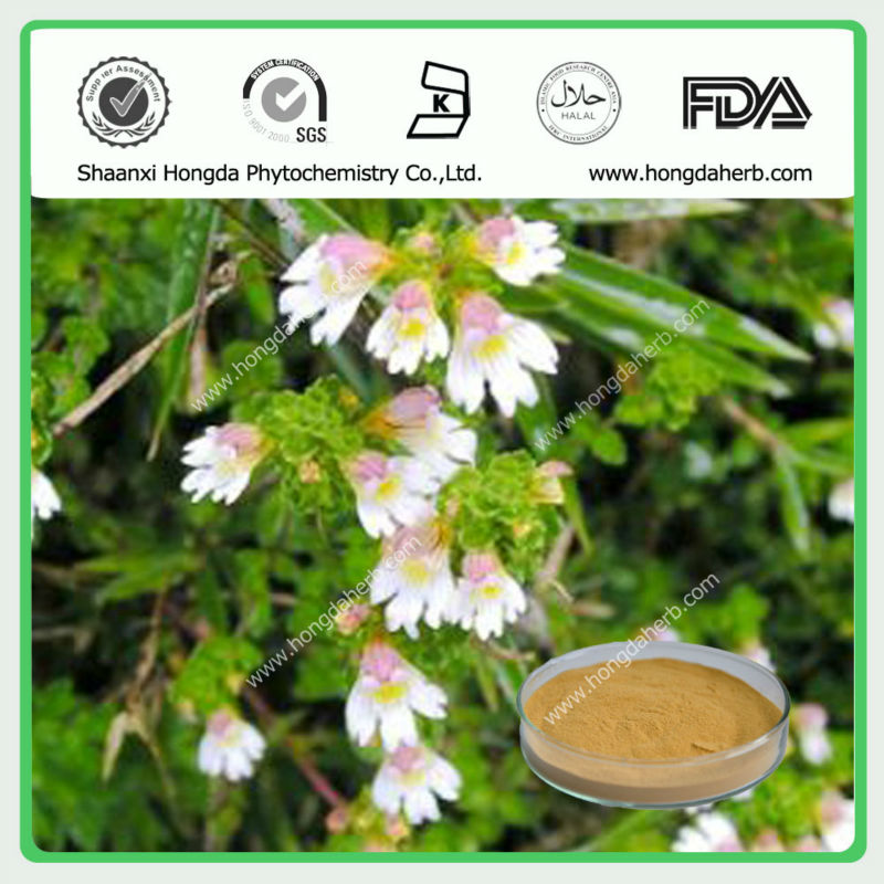 Factory Supply High Quality Eyebright Herbal Extract