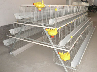 sale battery cage for poultry farm chicken house best selling chicken battery cage for poultry farm poultry farm chicken house chicken battery cage price Low price poultry farm battery cage for chicken house poultry equipment manufacturer automatic layer chicken cage hot sale layer battery chicken cage for sale egg layer chicken farm design battery cage for sale A frame floor saving design layer chicken cage for sale Kenya poultry farm house A type galvanized layer chicken cage poultry layer battery chicken cage for bangladesh farming used chicken coops metal layer cages for sale used chicken coops metal layer cages for sale A type metal chicken battery cages price Good quality competitive price poultry layer chicken cage for sale poultry layer battery chicken cages for sale for small famer kenya poultry farm design layer chicken cages promotional A type layer chicken cages for sale automatic water systerm poultry chicken layer cages commercial farming chicken poultry cage for sale for south africa uganda poultry farm layer chicken cage for sale tanzania poultry farm 4 tier chicken battery cage A-type 96 chickens battery cages for sale in Uganda poultry farm Pakistan poultry farm A type 96 chickens layers cage A type farming layers poultry battery chicken cagelayer farm battery chicken cage for sale in africa laying hens breeding chicken cage system for farm poultry farm house design layer egg chicken cage for Uganda
