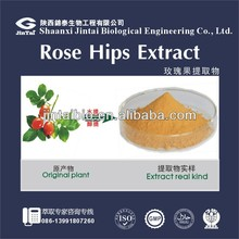 high quality natural VC 5% rose hip extract