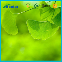 High qualiyt ginkgo biloba extract powder from pure ginkgo biloba leaf