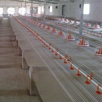 Automatic Poultry Raising System for chicken broiler farm ground floor feeding equipment