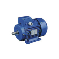 Gost standard electric motor for Russian market