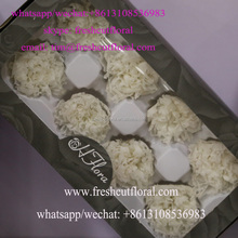 Competitive Wholesale Dried Flowers Reachable All The Time For Fresh Cut Flower Arrangements