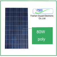 the chinese roof and ground solar panel 80W