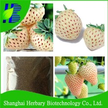 2017 Shanghai Herbary Sale white strawberry seeds for cultivation