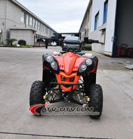 CE Approved 110cc Mini Quad