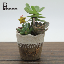 Roogo magical resin imitation lace garden succulents plants flowers pot