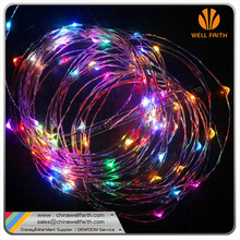 Programmable LED low voltage christmas lights
