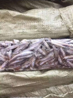 Cheap Price For Frozen Anchovy Fish For Canning