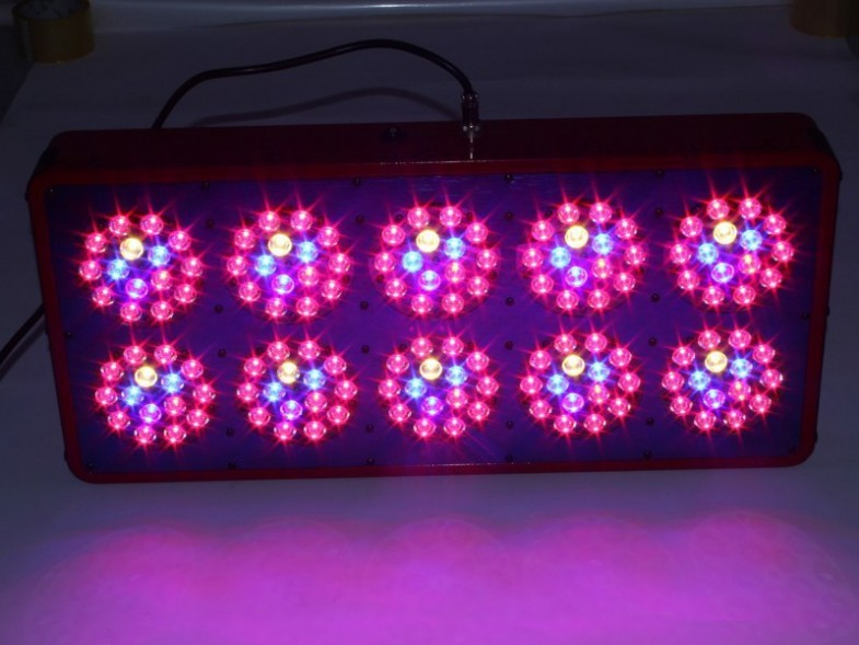360/450/540 Watts Apollo best led grow lights uk best plants to grow at home grow light canada