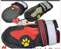 waterproof high quality sports dog boot , dog shoes