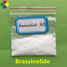 0.1%SP/90%TC steroid powder brassinosteroid use in agriculture brassinolide