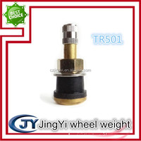 Tubeless Metal Clamp-in Tire Valves for Truck and Bus