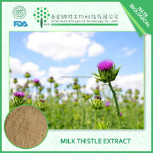 2017 BEST trustworthy supplier Silybum Marianum Milk thistle extract silymarin 80% FREE SAMPLE